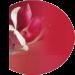 Qi Gong Saumur